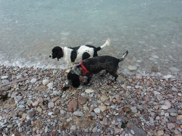 lucy-and-rosie-a-the-beach